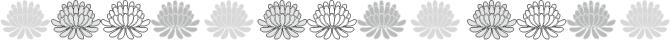 菊 ライン