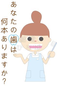 歯は何本?*カラー