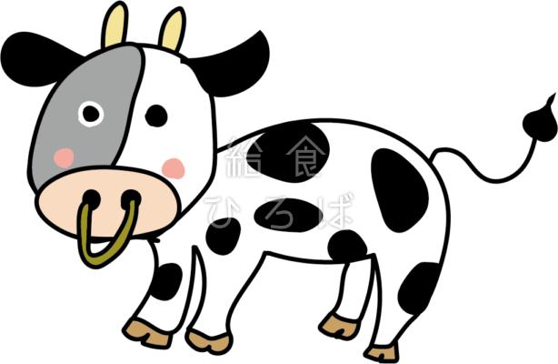 乳牛*カラー