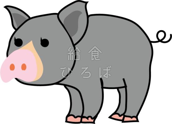 黒豚*カラー